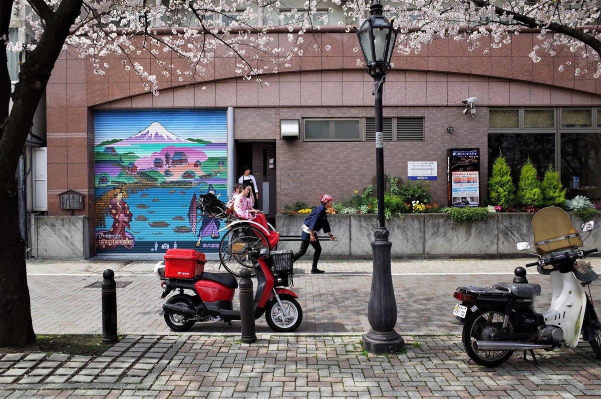Токио в ореоле сакуры - Swetlana V