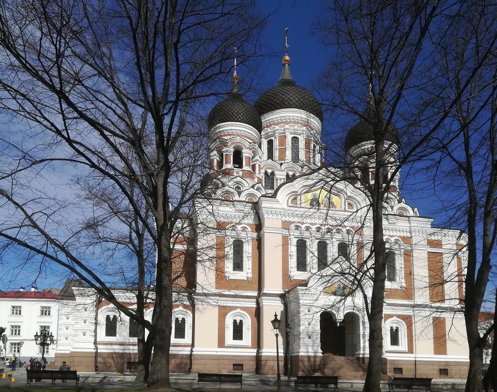 Александро-Невский собор, Таллин - veera (veerra)