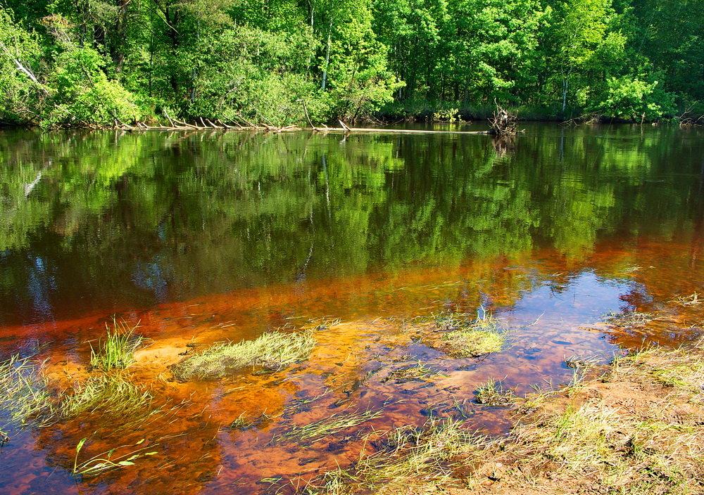 Река Пра.Обнажились отмели и мели... - Лесо-Вед (Баранов)