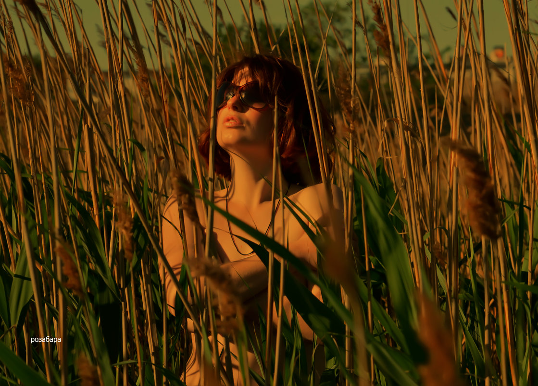 слияние с природой 2 - Роза Бара