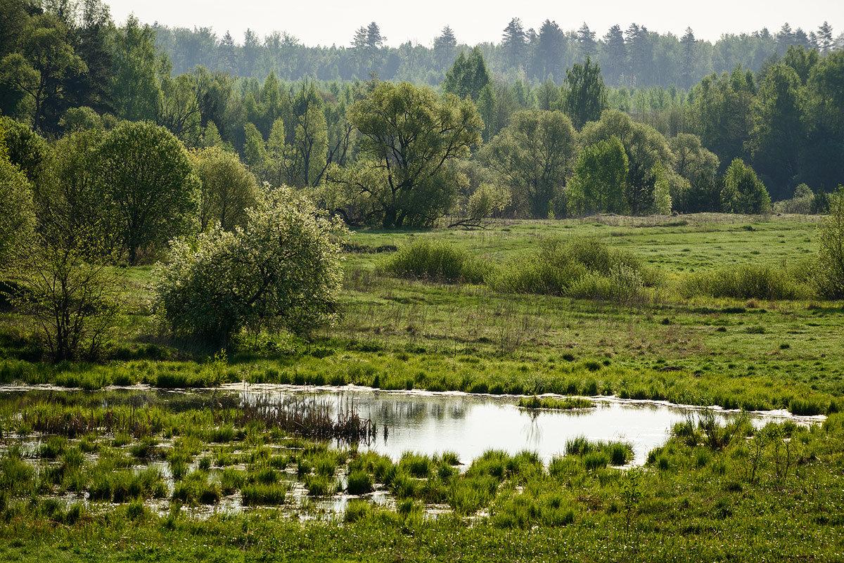 Озерцо... - Влад Никишин