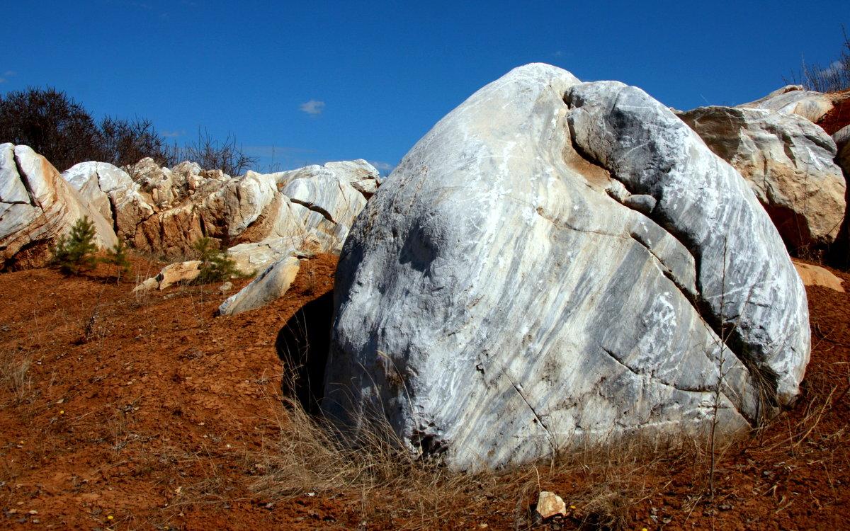 Каменная голова - d2vnlp *
