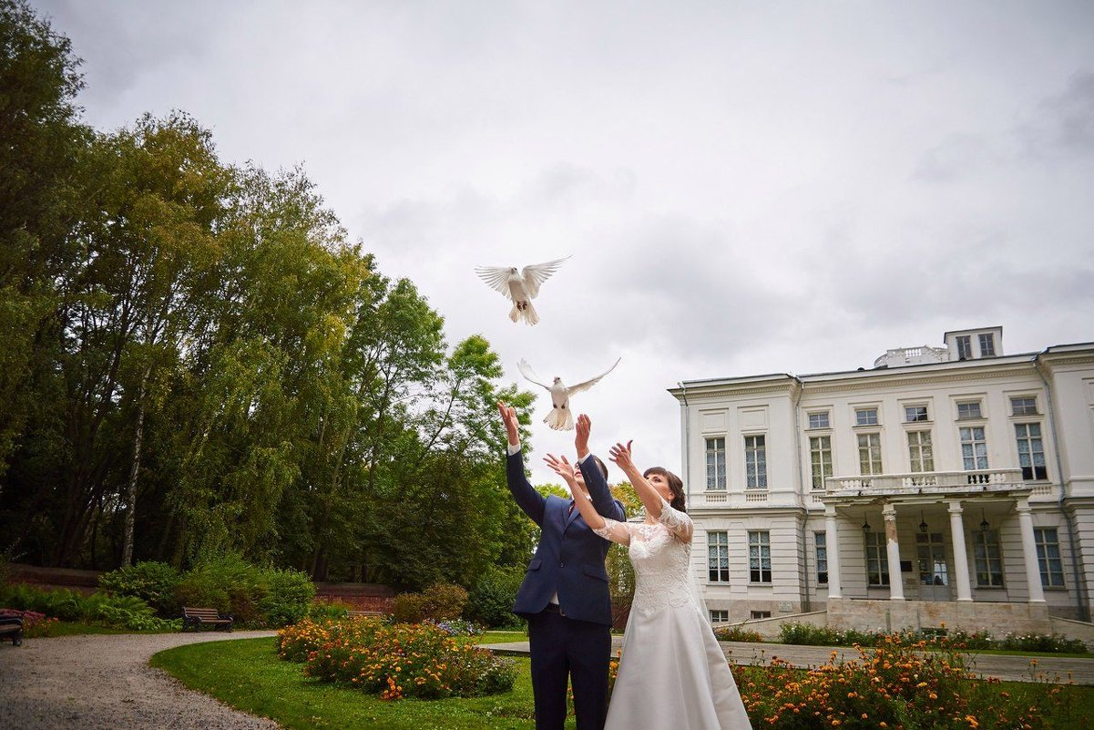 Летите голуби летите - Александр