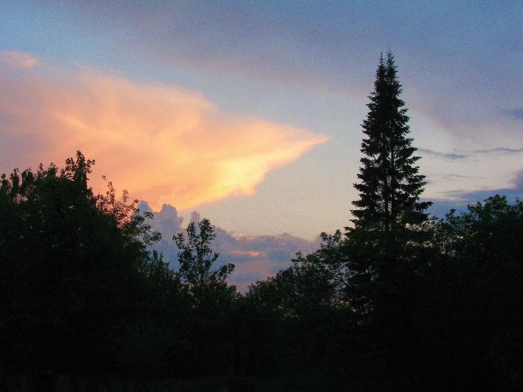 На закате - sm-lydmila