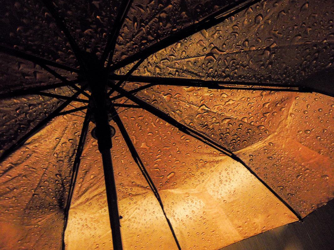Ночь. Дождь. Зонт - Валентин Драздов