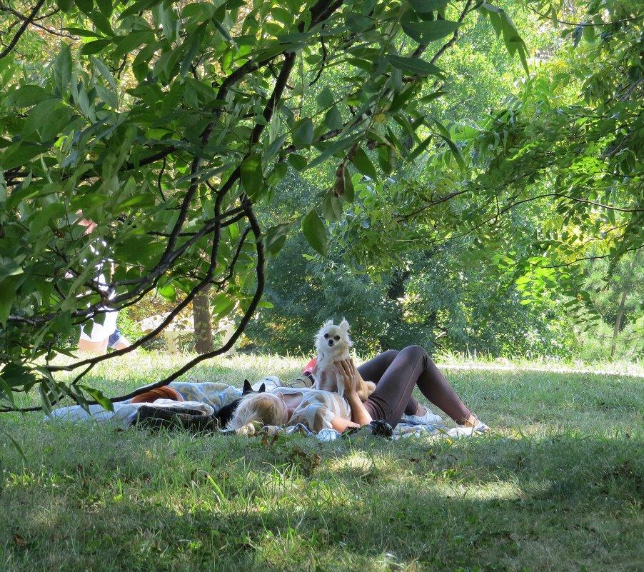 Отдых в парке - Вера Щукина