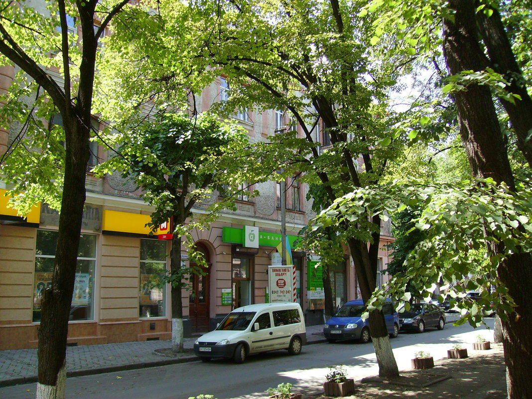 Улица   сотника   Мартынца   в   Ивано - Франковске - Андрей  Васильевич Коляскин