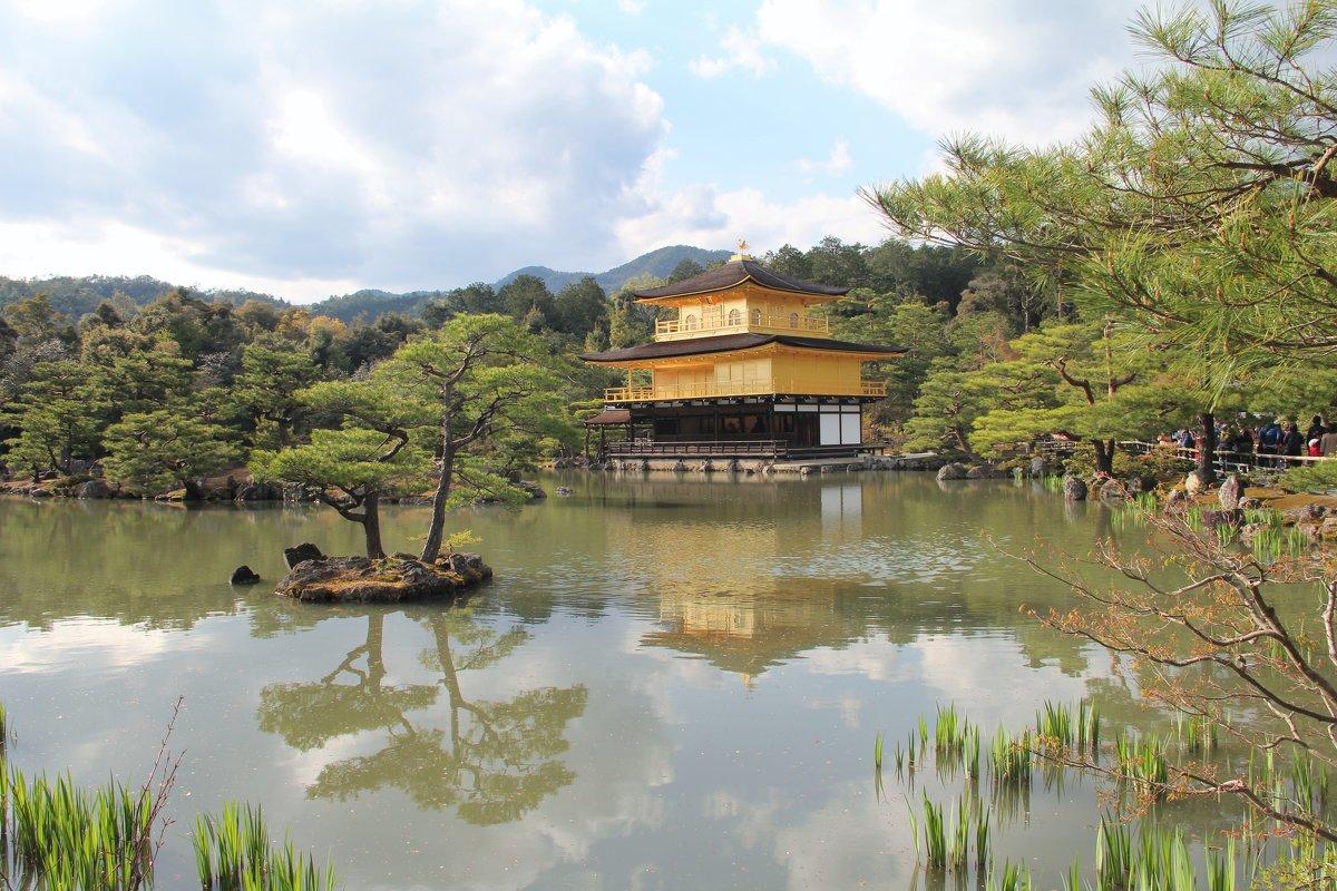 Япония. Киото. Золотой Павильон. - Виктория