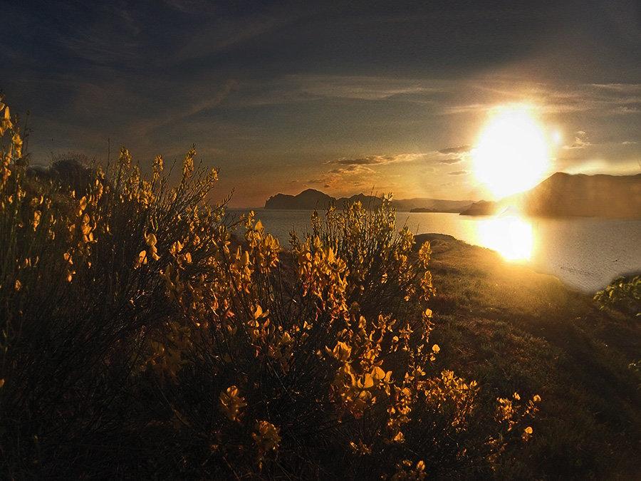 усталое солнце за гору садилось... - viton