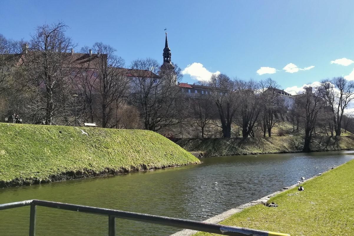 Тоомпарк – парк и пруд Шнелли, Таллин - veera (veerra)
