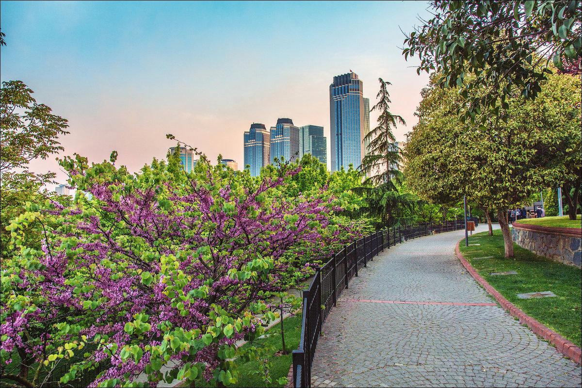 Небоскребы квартала Левент в Стамбуле - Ирина Лепнёва