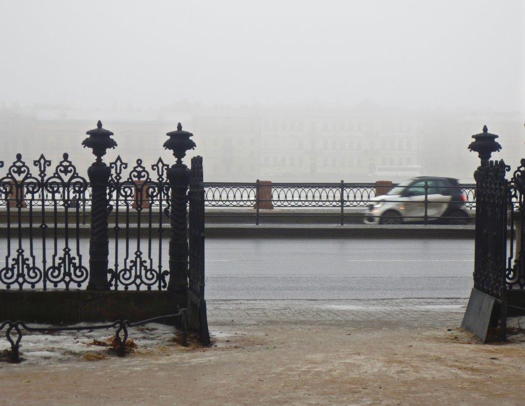 туман из Румянцевского садика - Елена