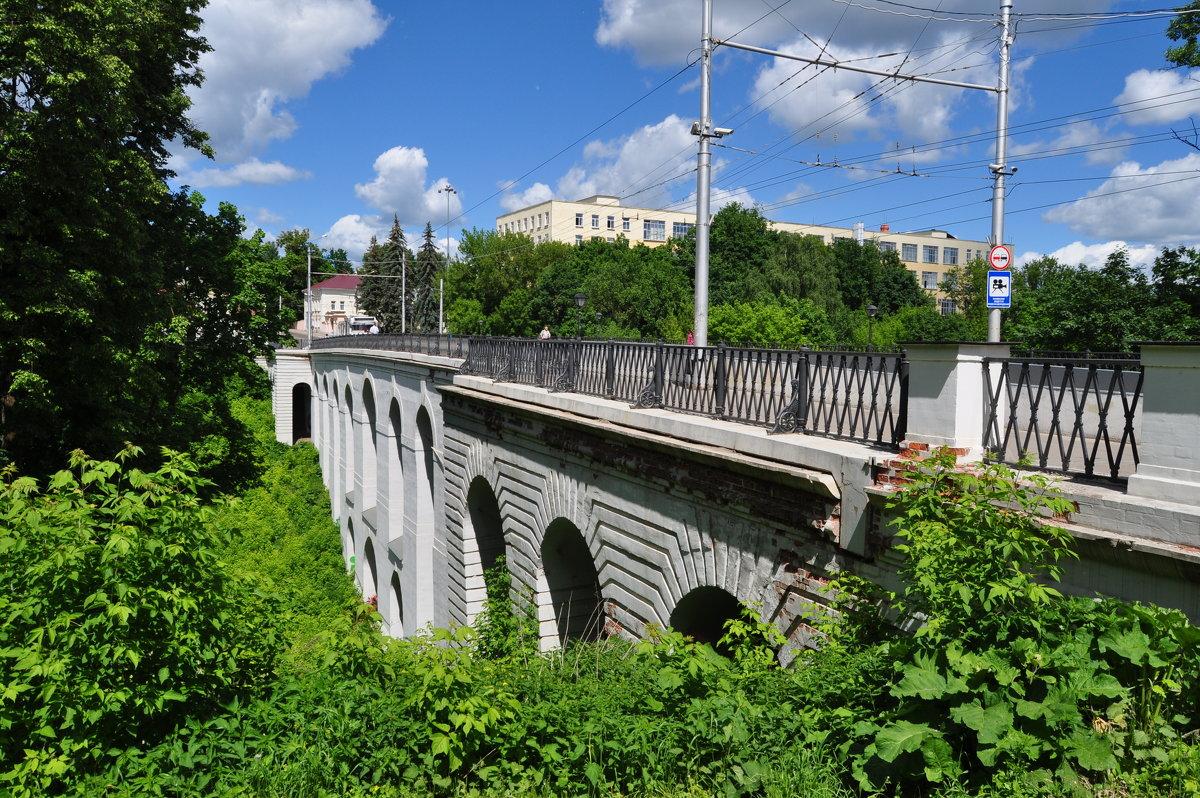 Каменный мост. - Лариса Вишневская