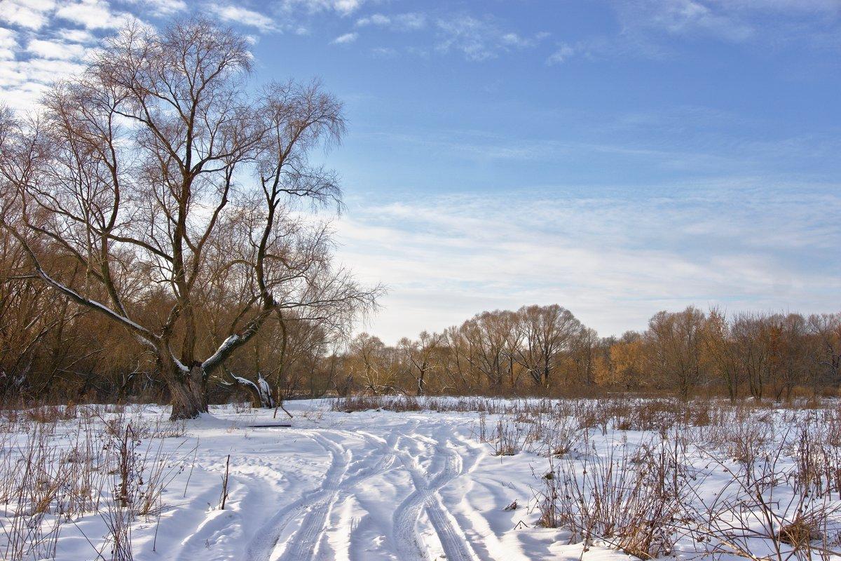 ясный зимний день - Руслан