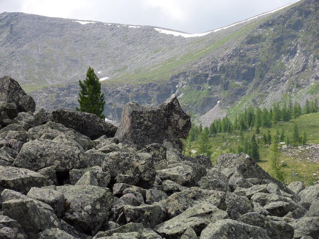 Каменный зверь - Sayan Wolf