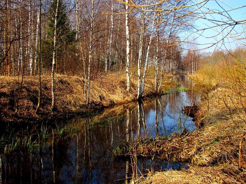 Речка Талица в апреле - alek48s