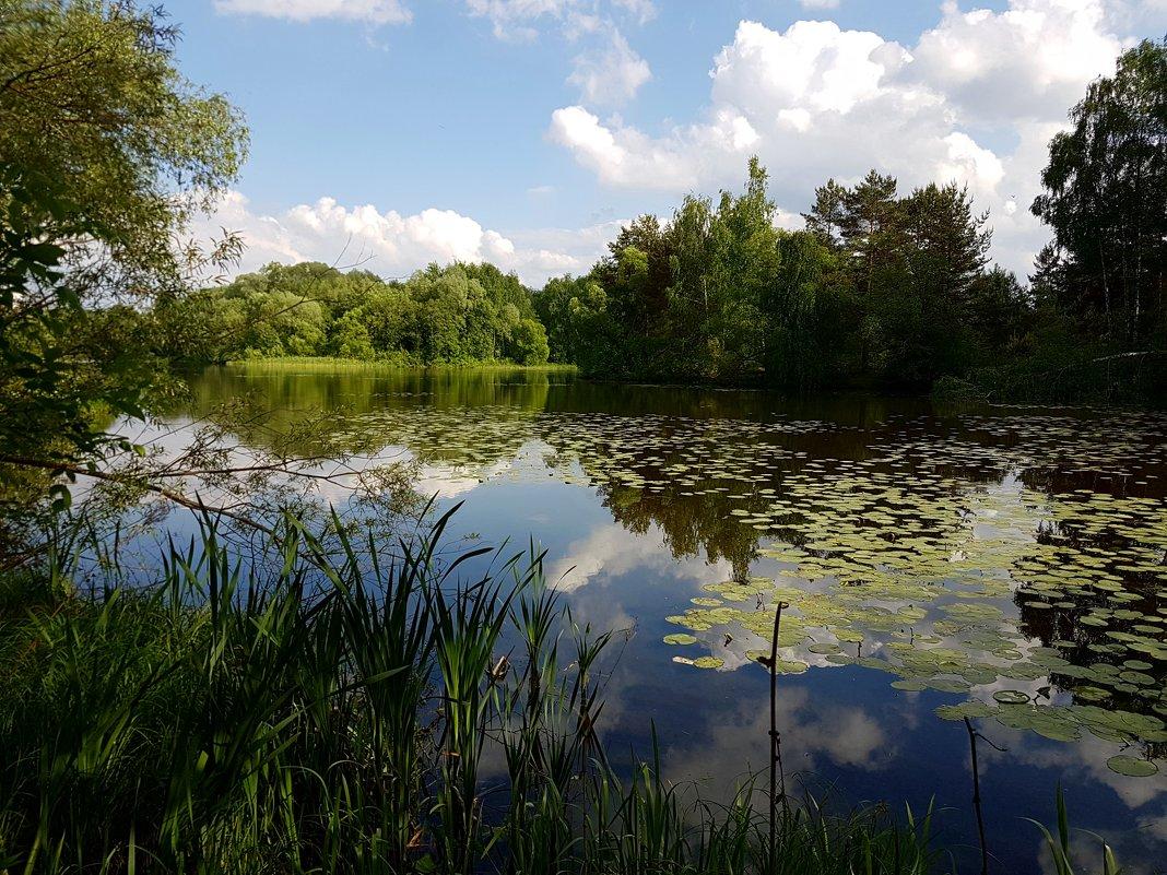 Небо в озере купалось... - Ольга Русанова (olg-rusanowa2010)