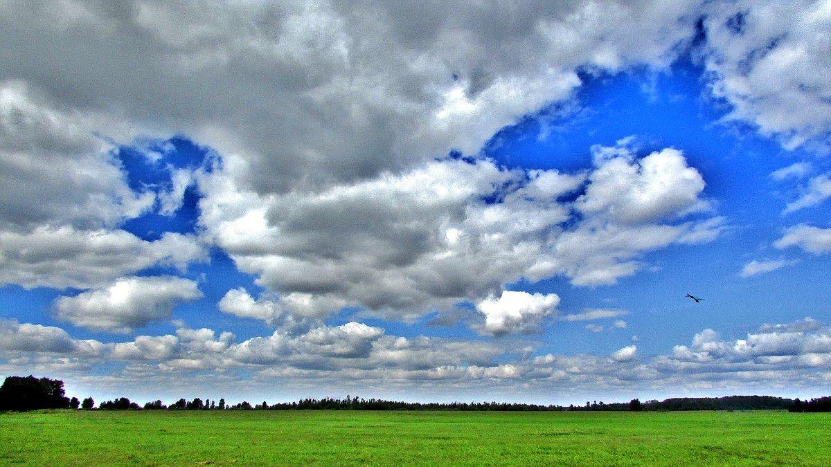 Небо - Владимир