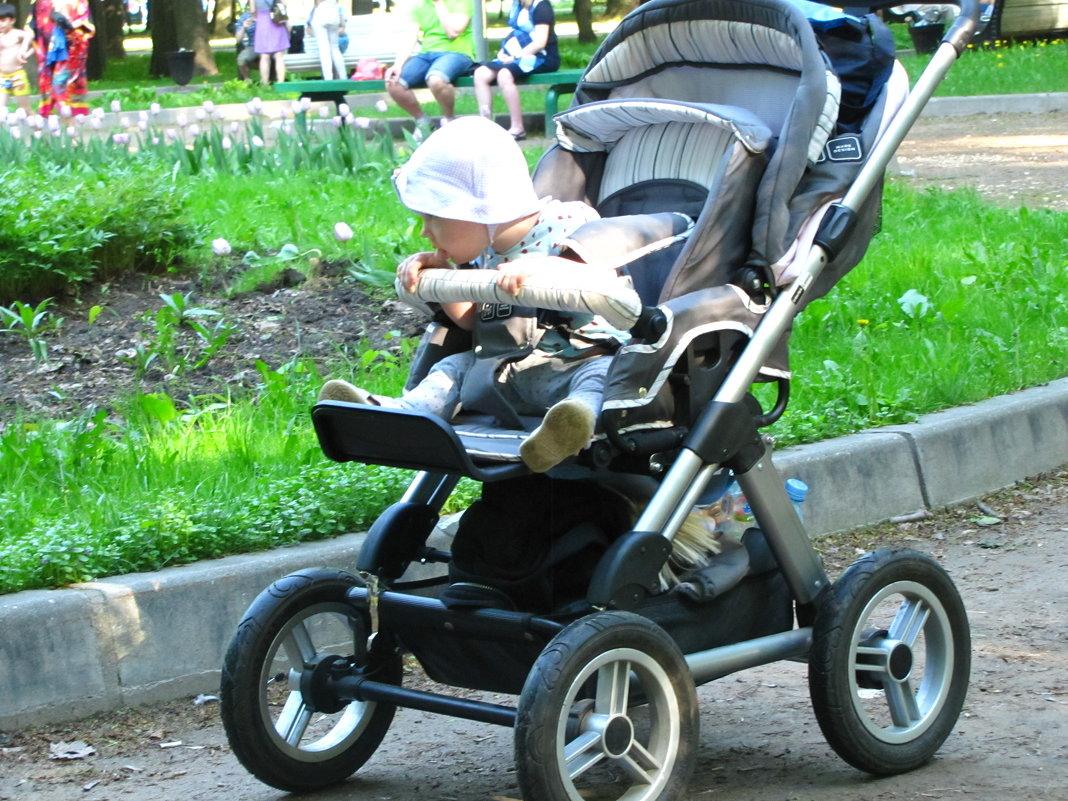 В летнем парке.... - alek48s