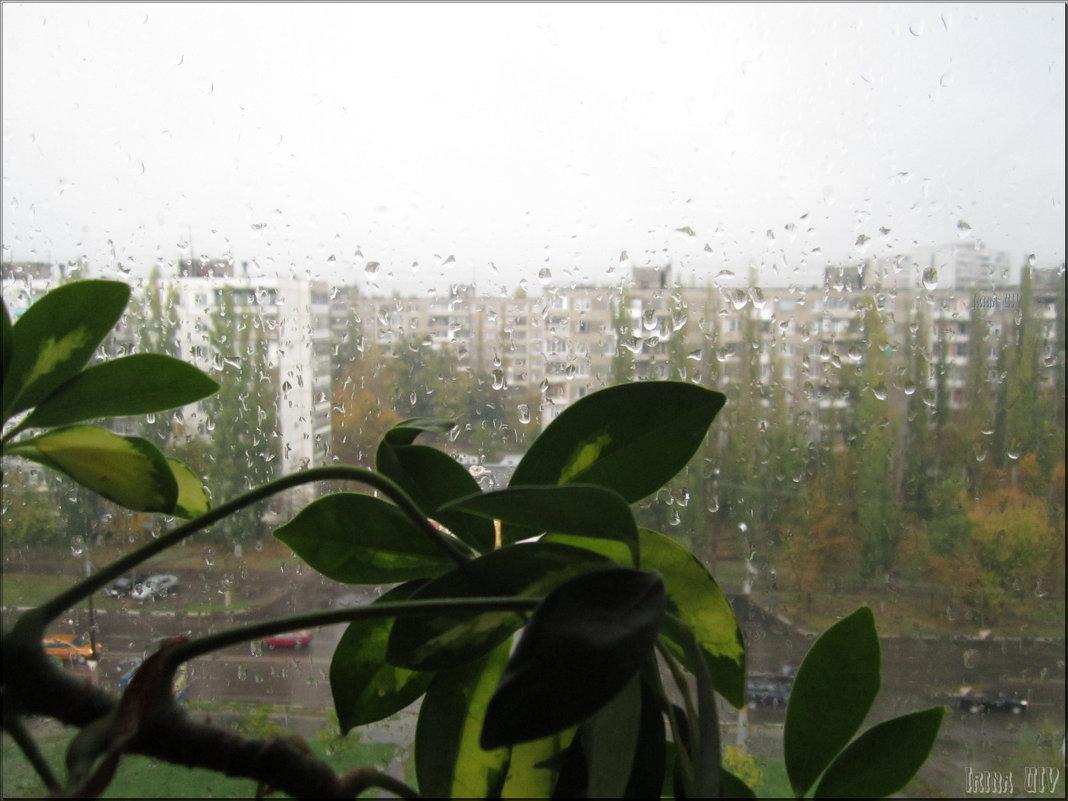 """""""Дождит октябрь за окном..."""" - Irina Gizhdeu"""
