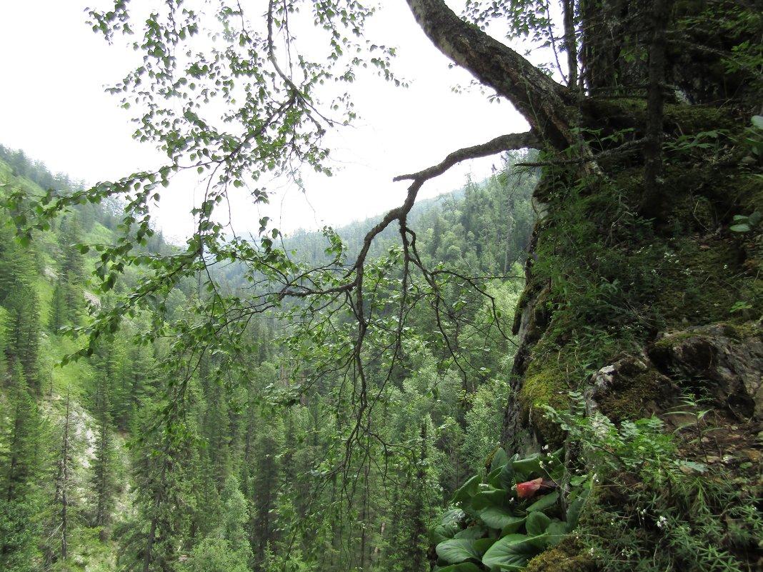 Ущелье Водопадное - Galaelina ***