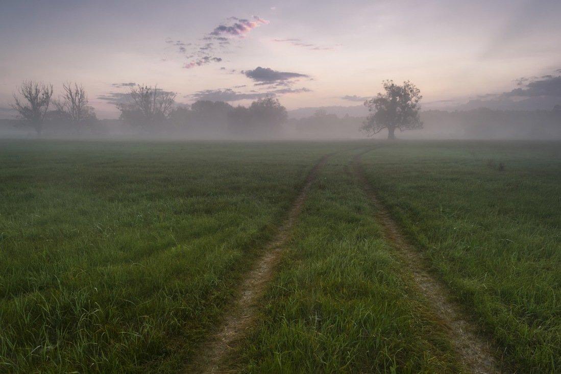Дорога в даль - Сергей Корнев