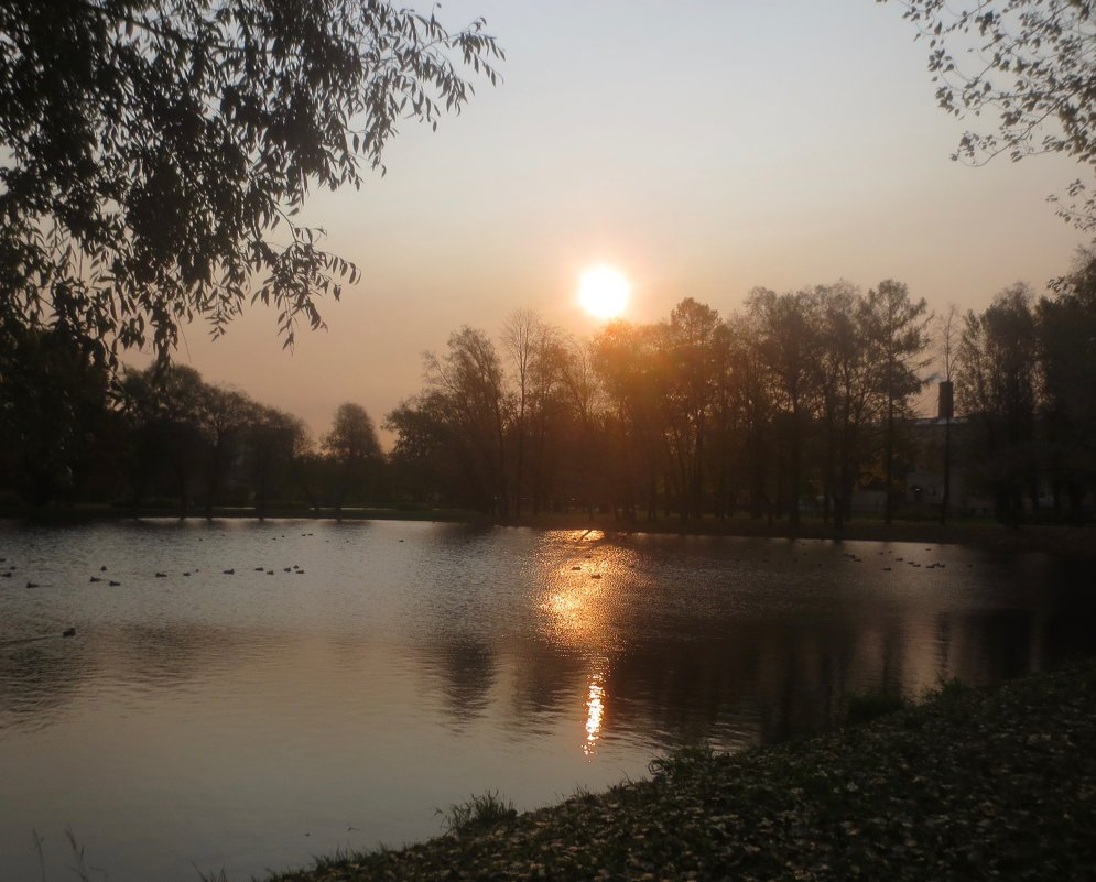 Восход над парком Победы - Елена