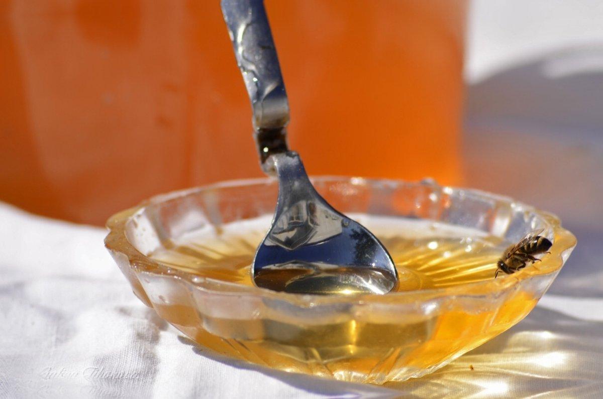 Мёд и пчёлка - galina tihonova
