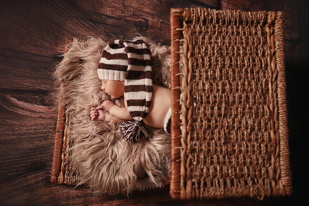 Мир маленьких гномиков - Елена Буравцева