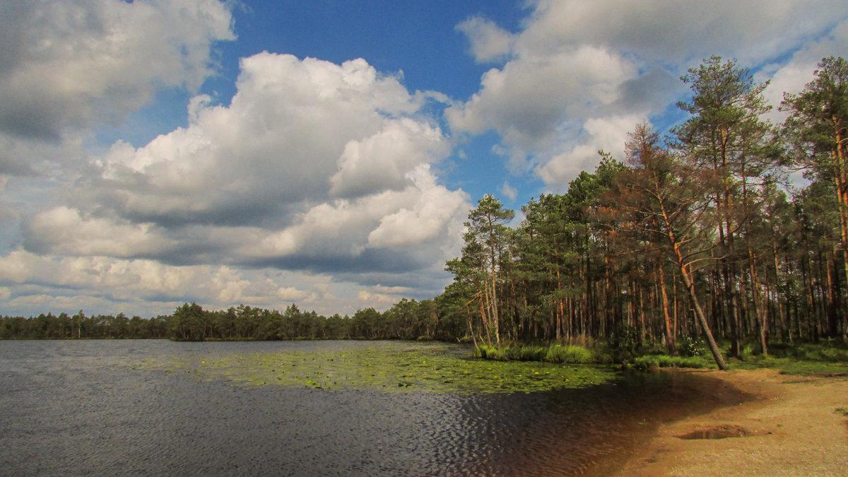 У озера - Татьяна Осипова(Deni2048)