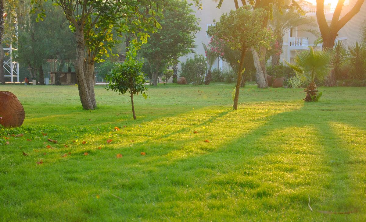 Травка зеленеет и солнышко блестит - Владимир Владимирович