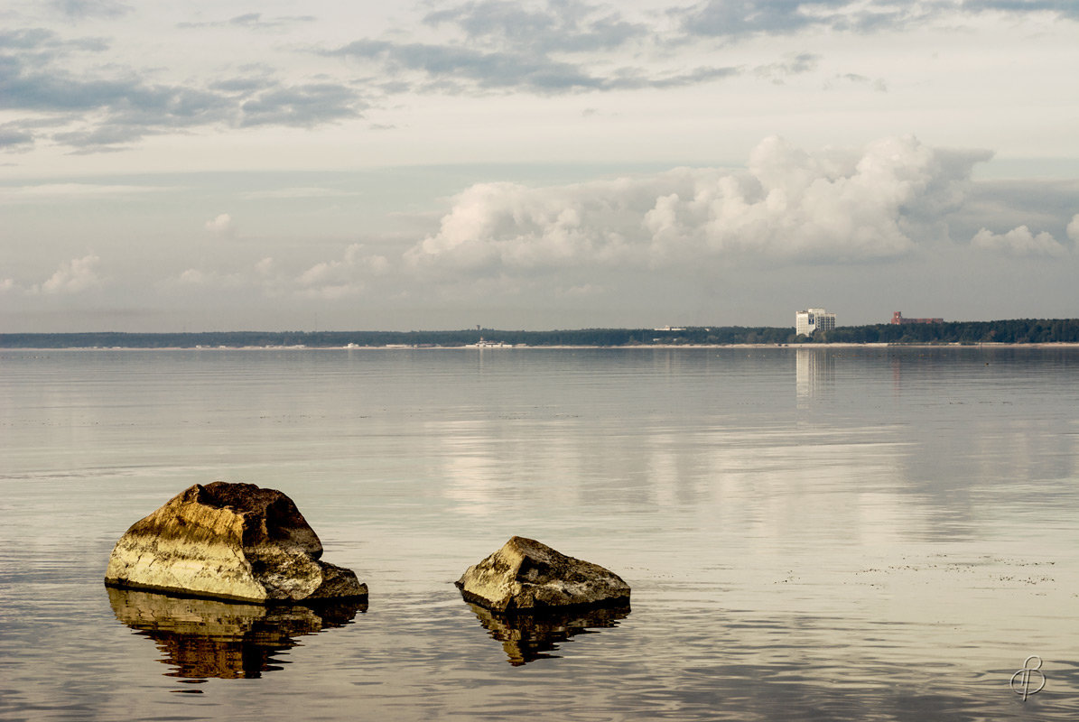 На Финском заливе (30) - Виталий