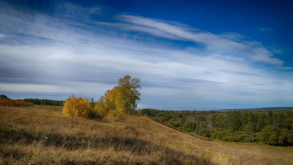 Осень - Вера Сафонова