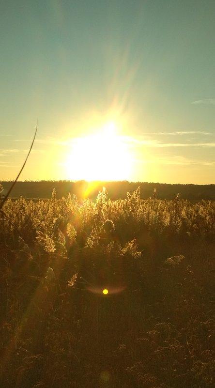 Ярче солнца- только солнце!!! - Marusya Boguslavka