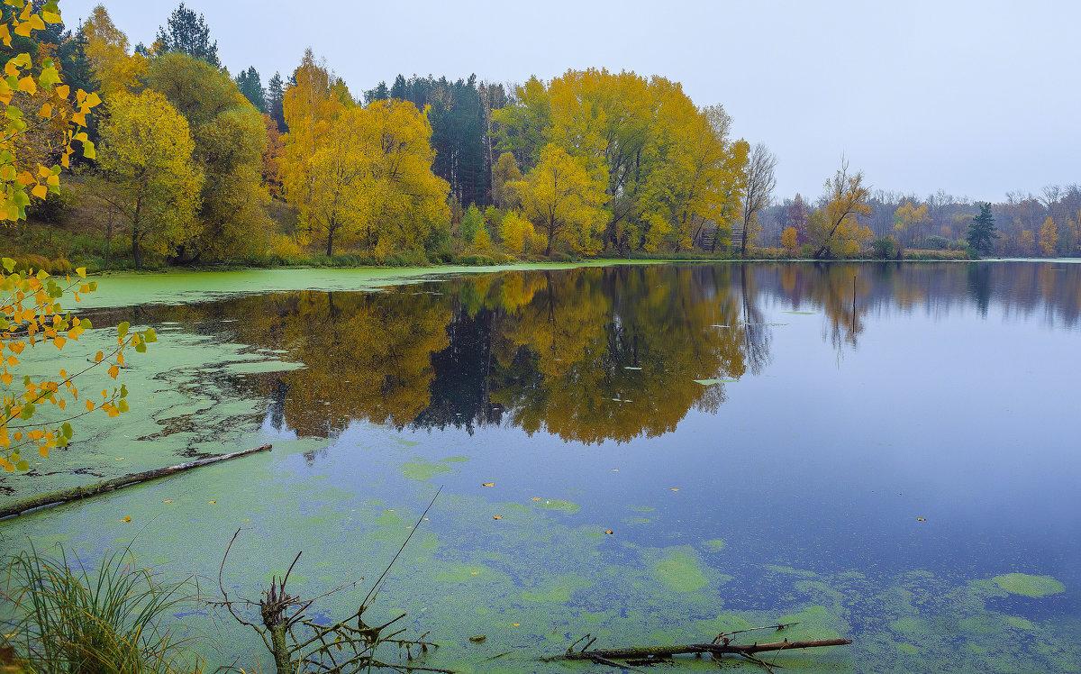 Утро... Осень... Туман... - Евгений Осипов