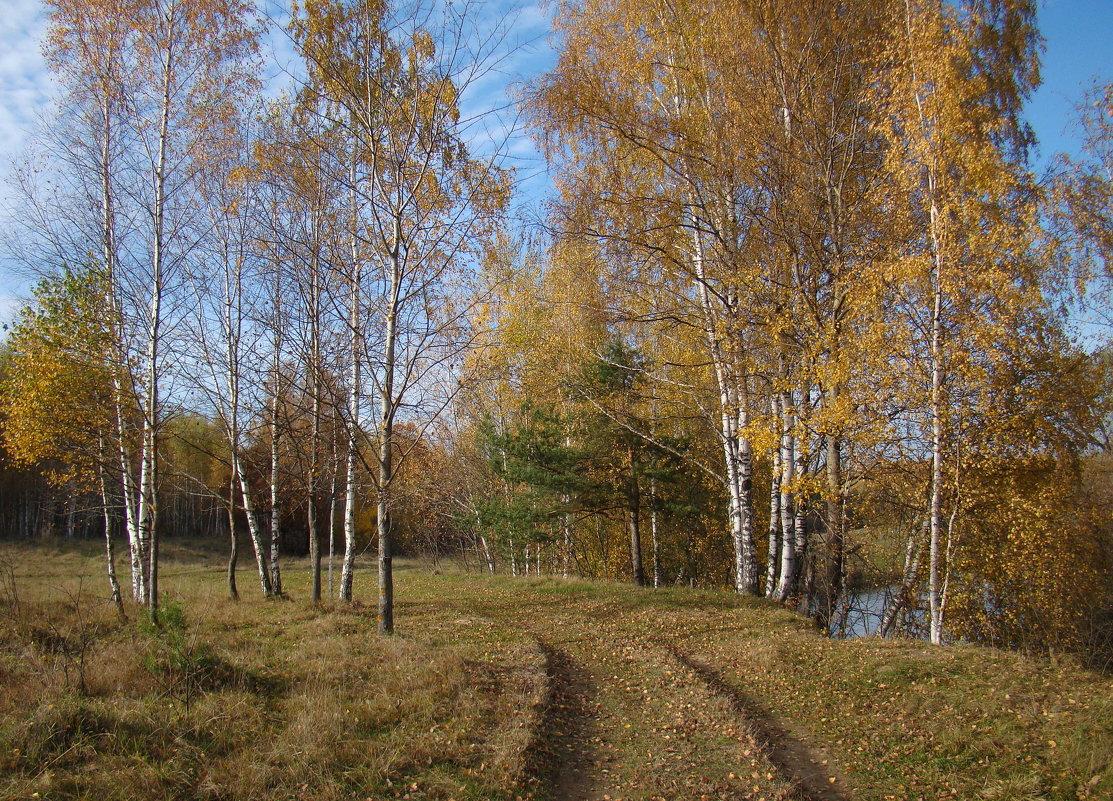 Прогулка вдоль берега Вори - Татьяна Георгиевна