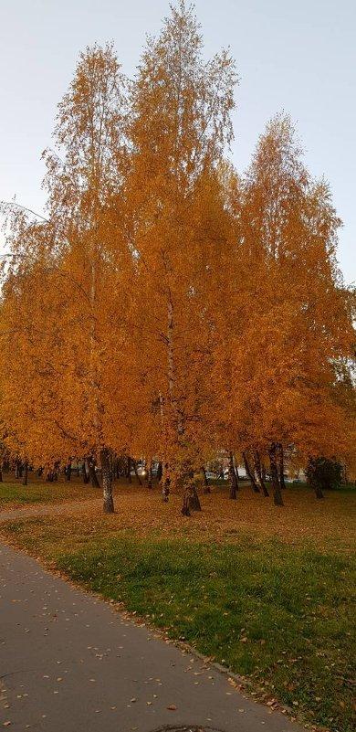 Золотая осень - minchanka