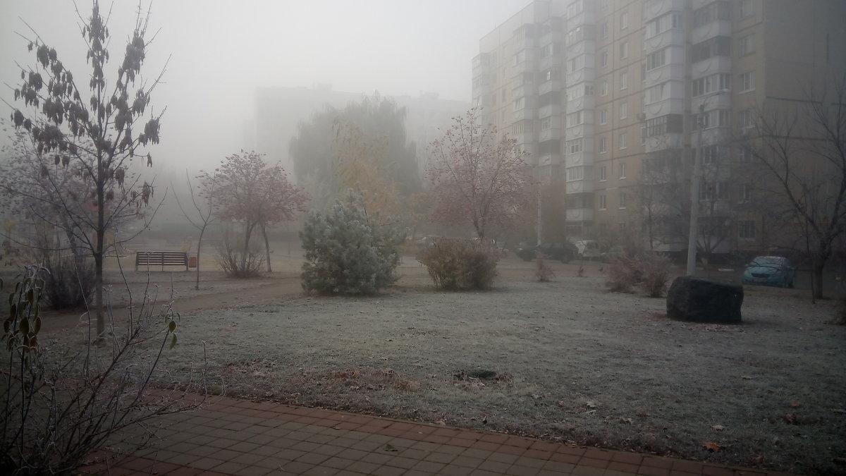 Заморозки - Serg