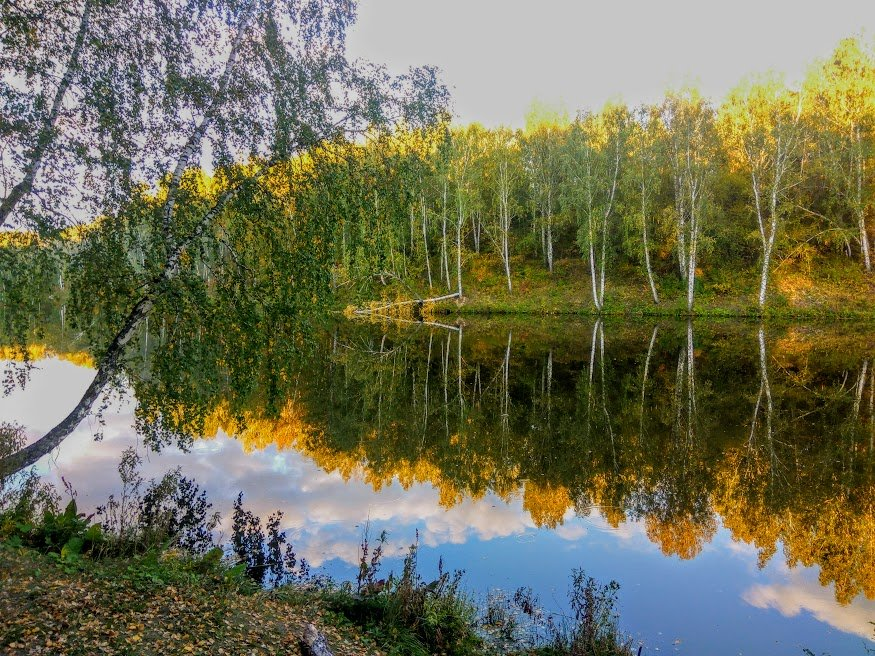 Это осень. - Ольга
