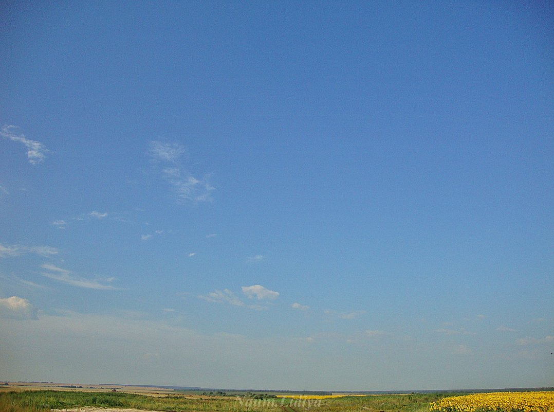 Осеннее небо - Лидия (naum.lidiya)