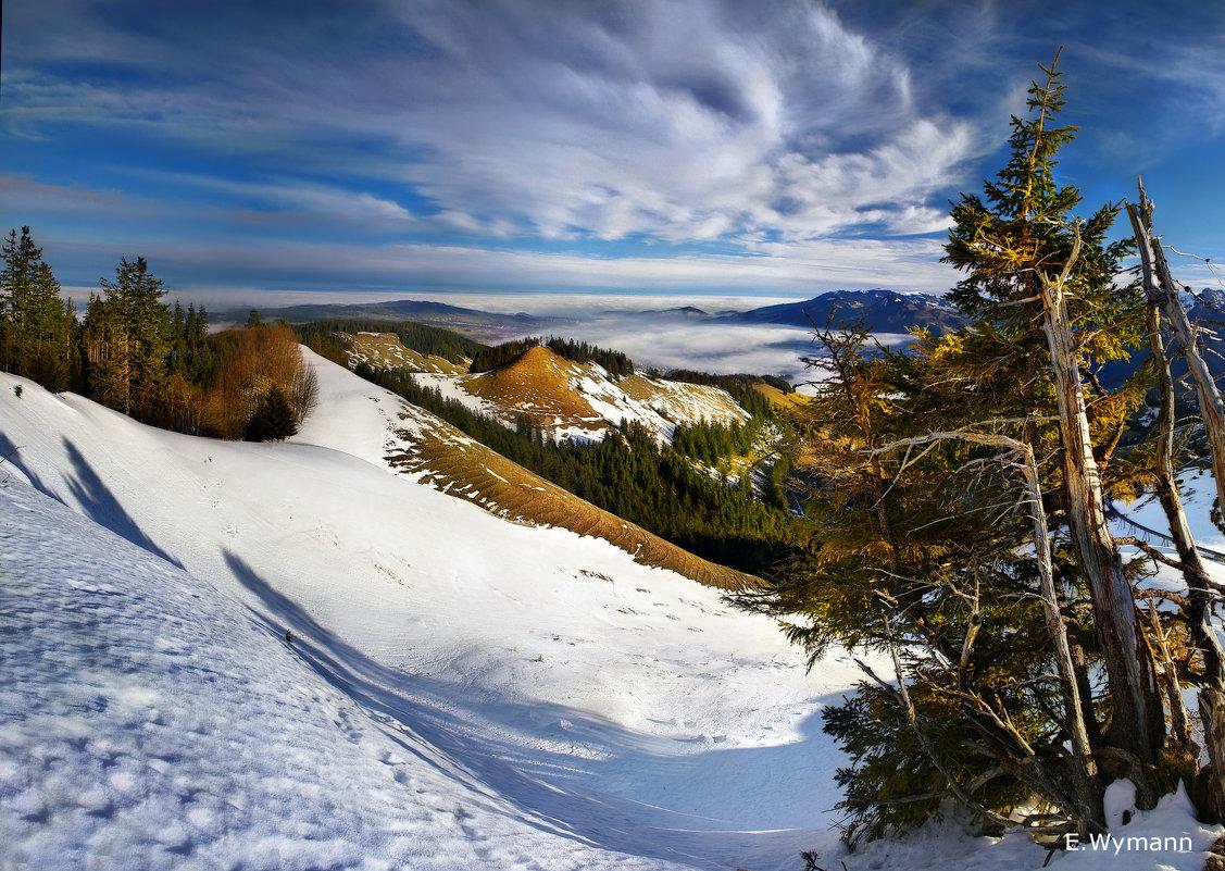 зима в горах - Elena Wymann
