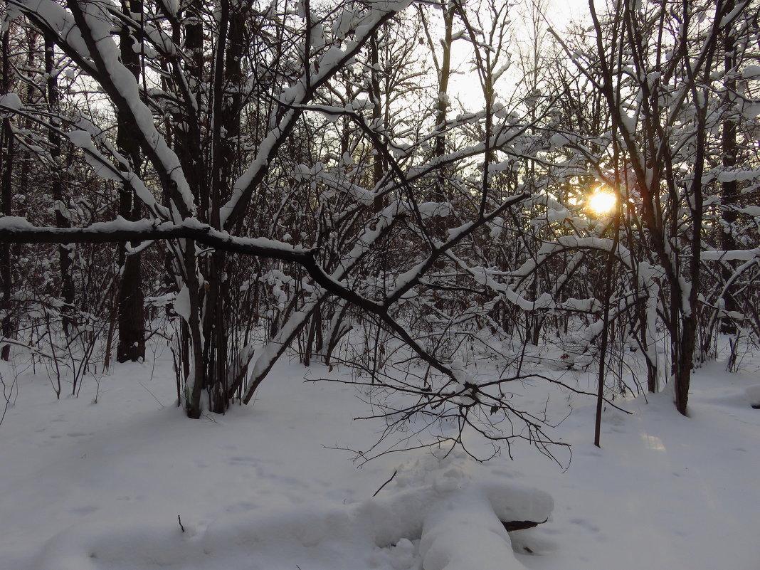 канун Старого Нового года - Андрей Лукьянов
