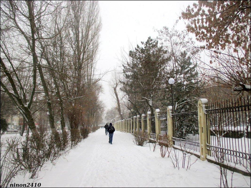 Зимний Ростов - Нина Бутко