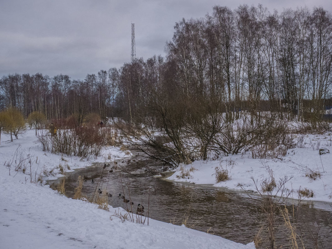 Пейзажей зимних хмурая краса - Юрий Велицкий