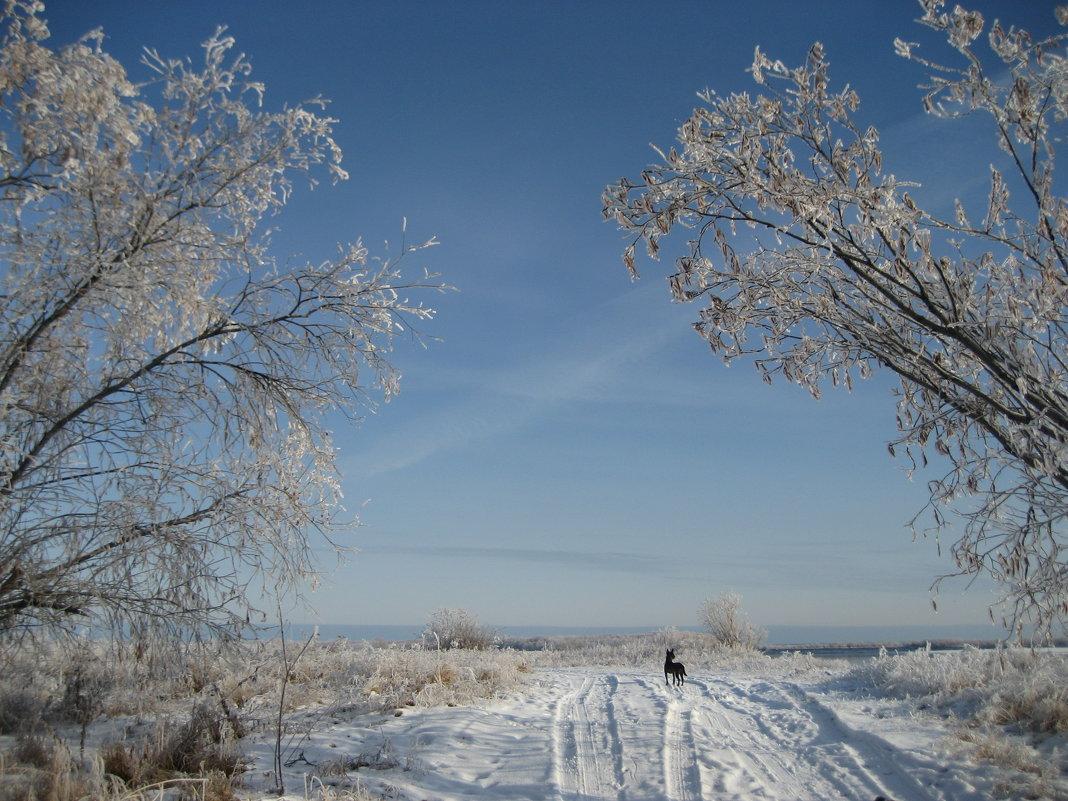 У Ленской протоки - Anna Ivanova