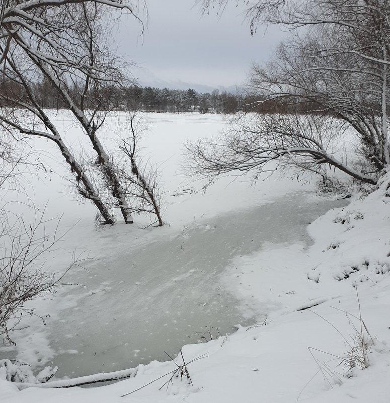 Десна замерзла - Александр Скамо