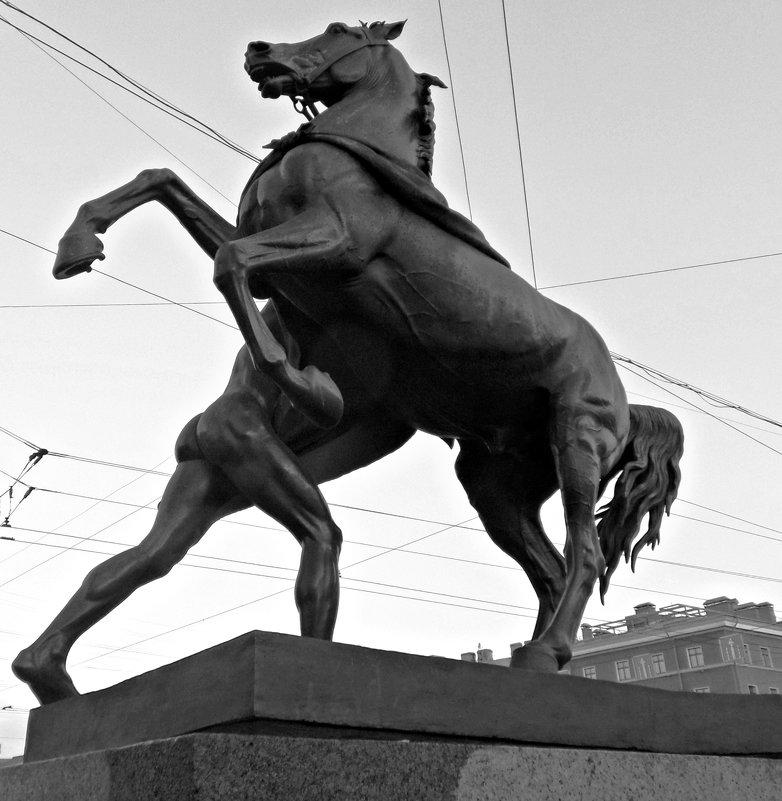 Еще раз о Конях. - Марина Харченкова