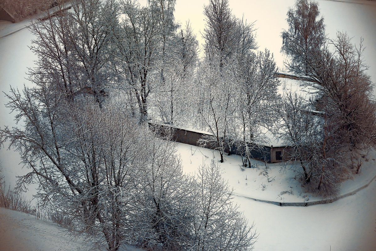 ...зима 2019 - Pasha Zhidkov