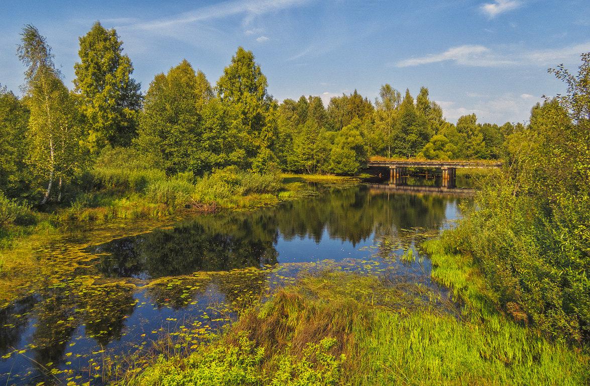 У старого моста - Сергей Цветков