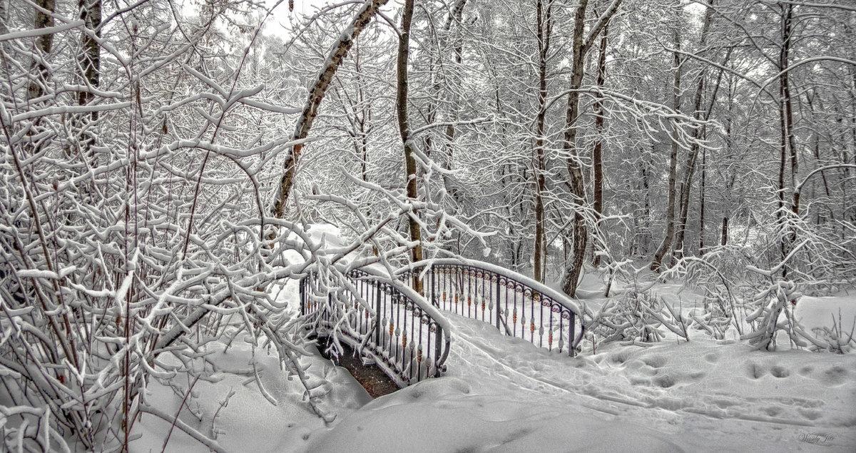 Мостик в зимнем парке. - Василий Ярославцев